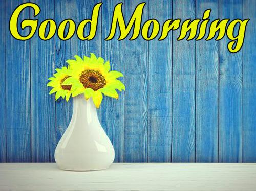 BestSunflower Good Morning Wallpaper