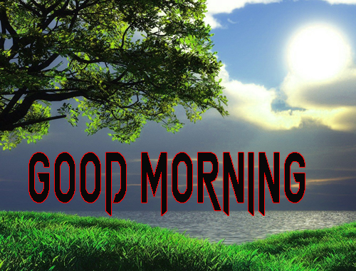 Free Good Morning Images Wallpaper Pics Download