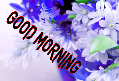 Free Good Morning Images Photo Wallpaper Download
