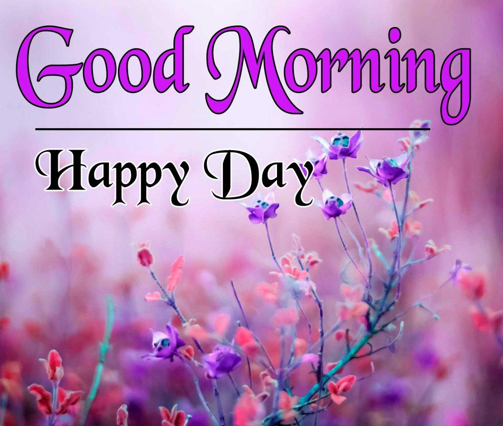 Flowers Good Morning Pics Fre