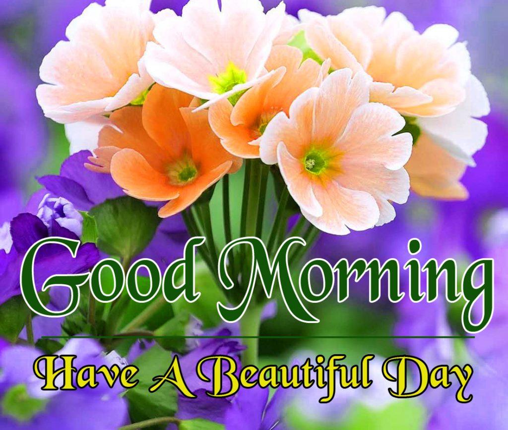 Flowers Good Morning Wallpaper Free