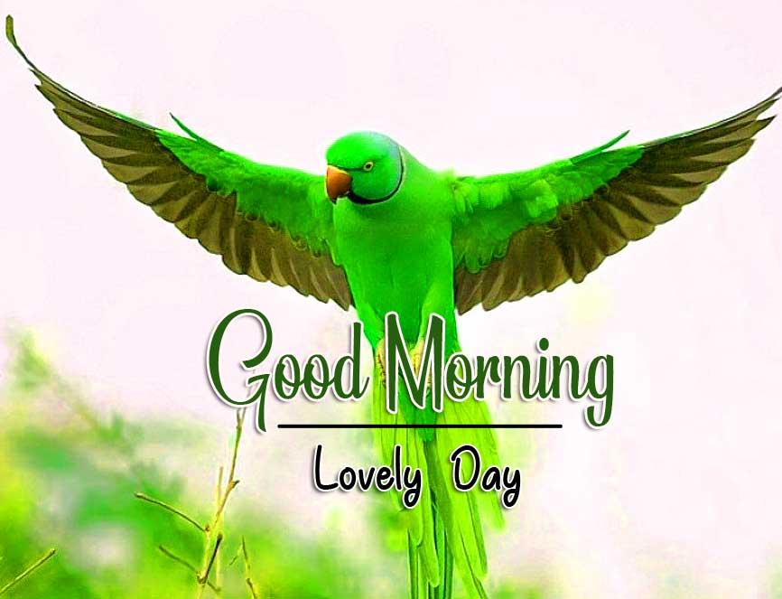 Best LatestGood Morning Images hd 1080p Wallpaper DOWNLOAD