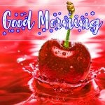 Latest Free Good Morning Images Pic Download
