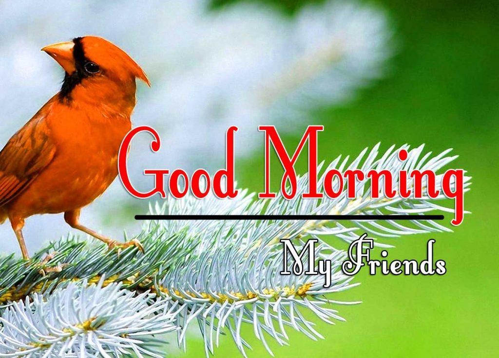 Good Morning Images hd 1080 Pics Download