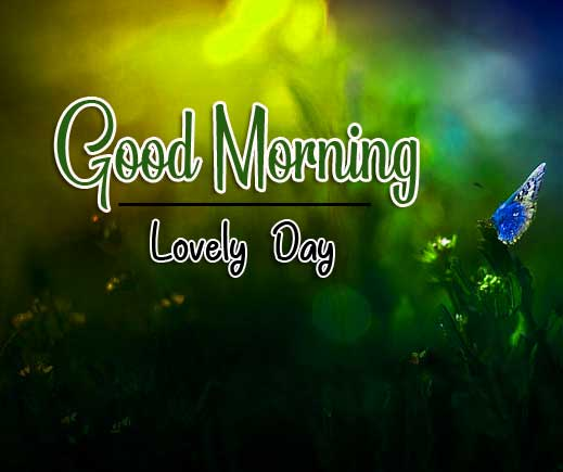 Good Morning Images hd 1080p Photo Free Download