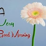 Husband Wife Romantic Good Morning Images Pics New Download