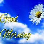 Husband Wife Romantic Good Morning Images Wallpaper Free