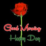 Rose Free Husband Wife Romantic Good Morning Images Pics Download