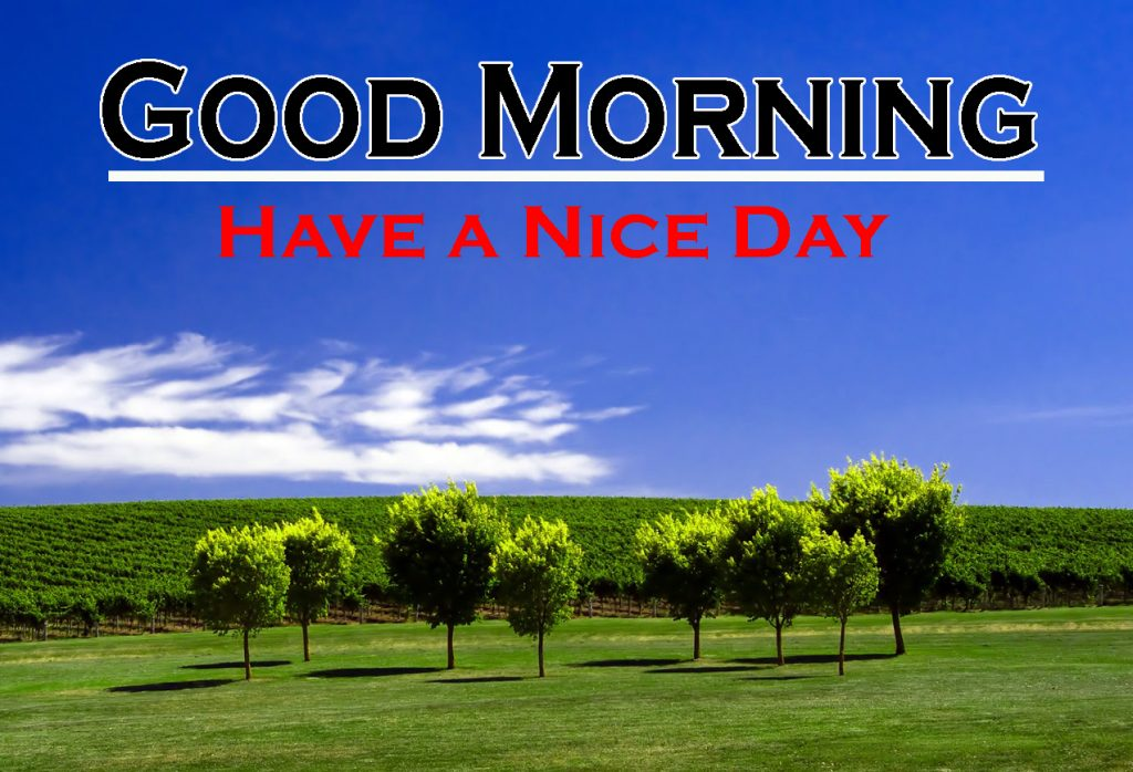 Nature Good Morning Images pics hd download