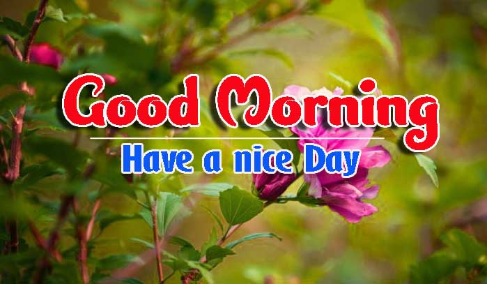 Best Good Morning Images for Him photo pics download