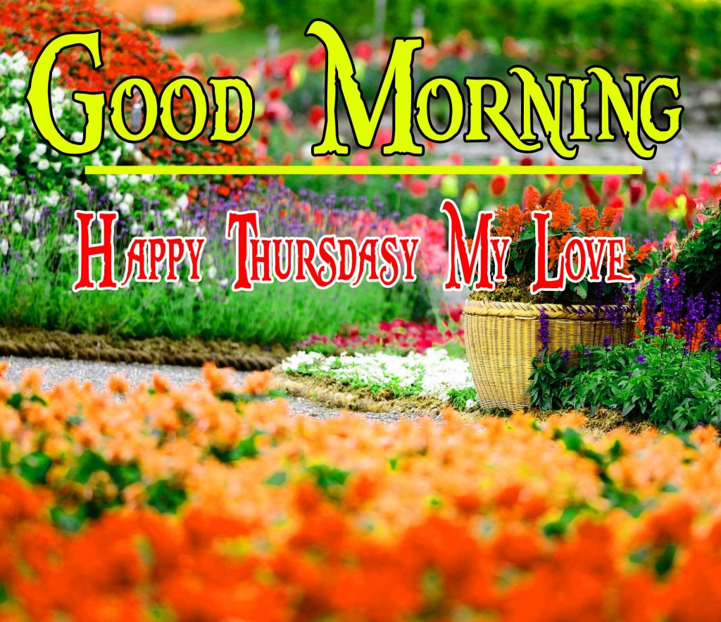 Thursday Good Morning Wishes Images With Nature