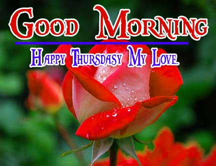 Thursday Good Morning Wishes Pics Download