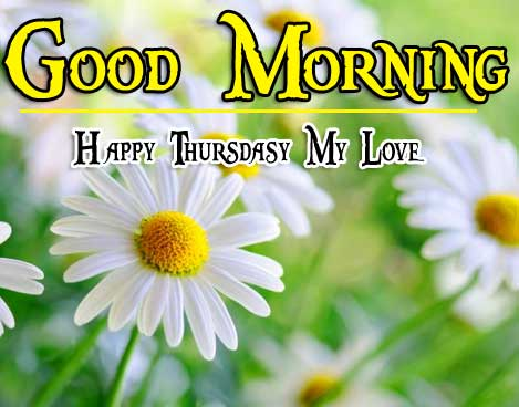 Thursday Good Morning Wishes Wallpaper Photo Download