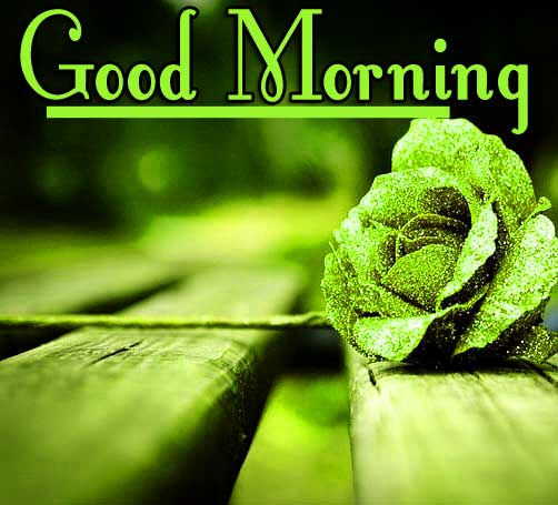 Thursday Good Morning Wishes Wallpaper Download