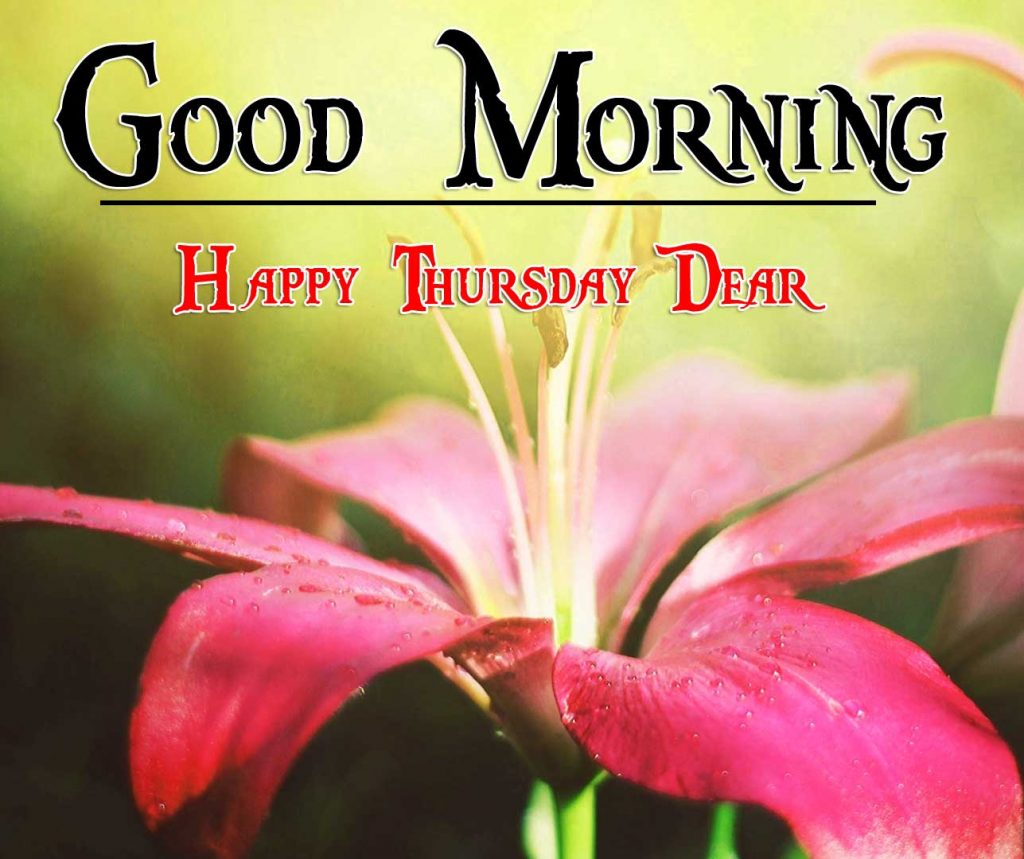 Thursday Good Morning Photo Free Download