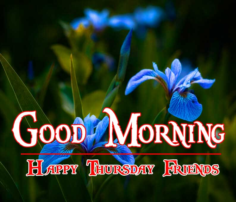 Thursday Good Morning Wishes Pics Wallpaper HD Download