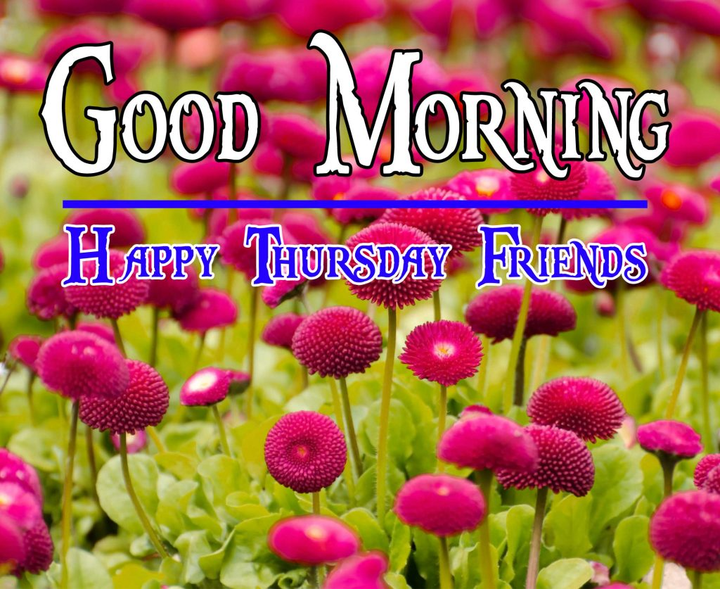 Thursday Good Morning Wishes Pics Wallpaper Download for Facebook