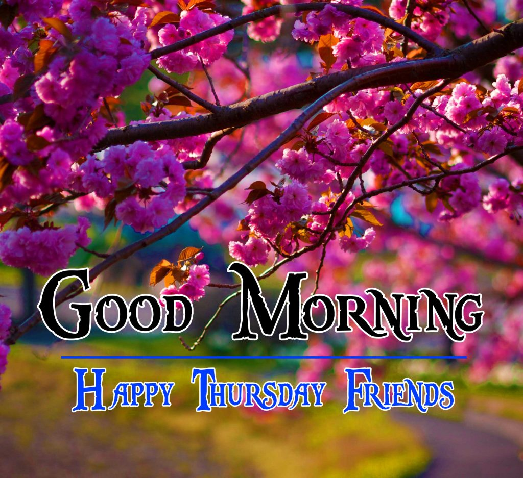 Thursday Good Morning Wishes Wallpaper Pictures Download
