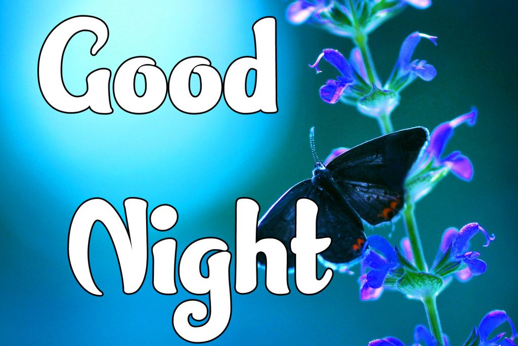 Beautiful Good Night Images Pics Wallpaper Free Download