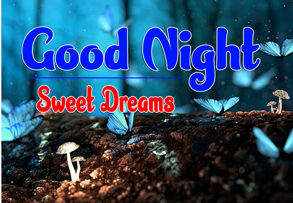 Beautiful Good Night Images Pics Pictures Free Download