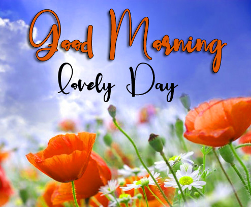 Friend Good Morning Images Wallpaper