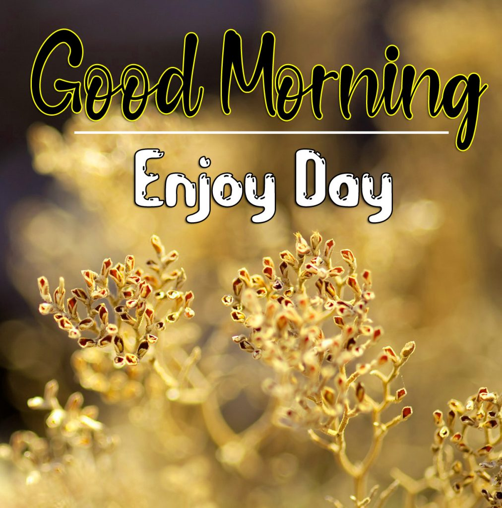 Friend Good Morning Wallpaper Download