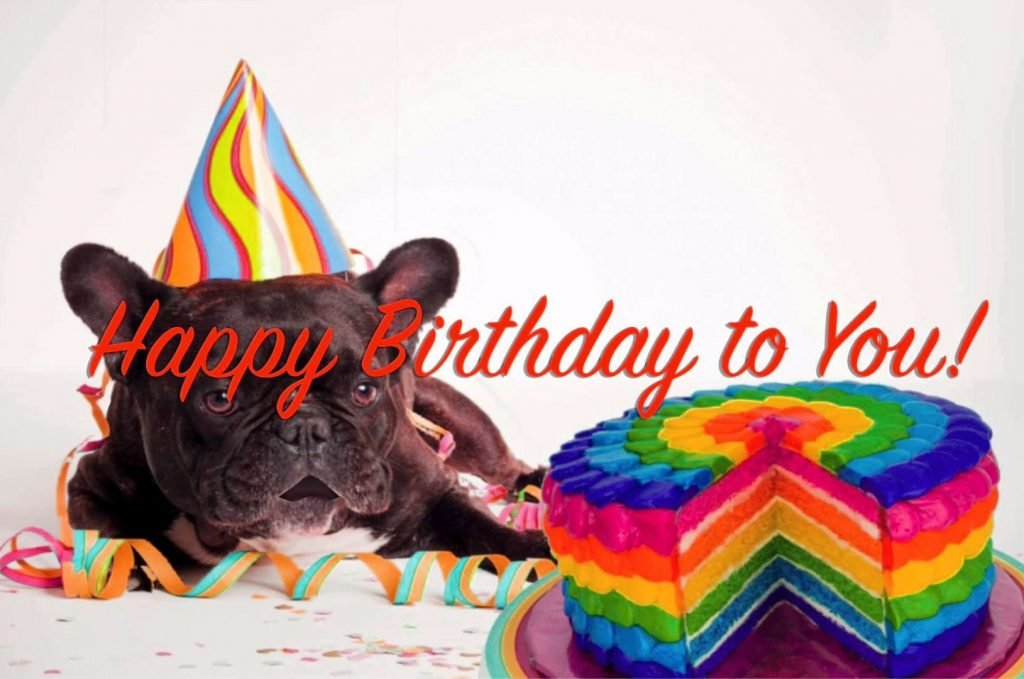 Funny Happy Birthday Images Pics Wallpaper Free Download