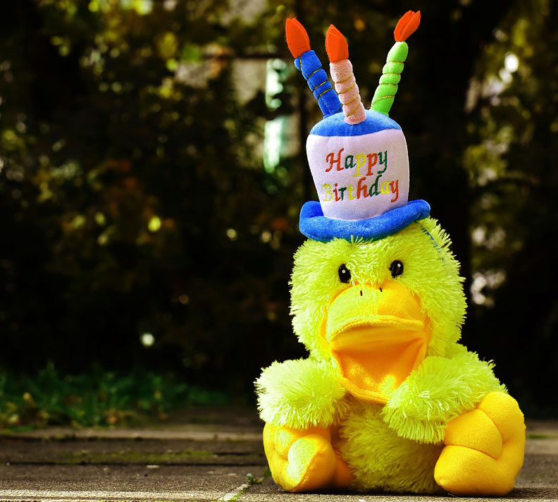 Funny Happy Birthday Images Pics Pictures Download