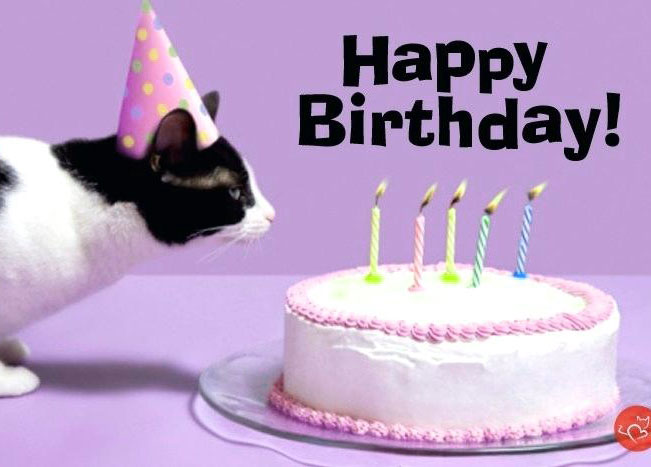 Funny Happy Birthday Images Photo Download for Whatsapp