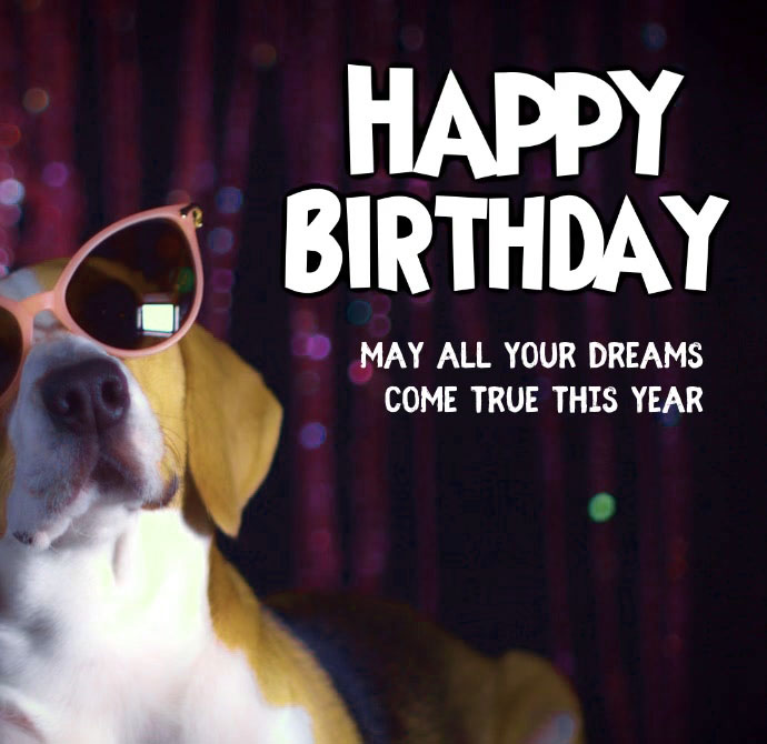 Funny Happy Birthday Images Pcis photo Download