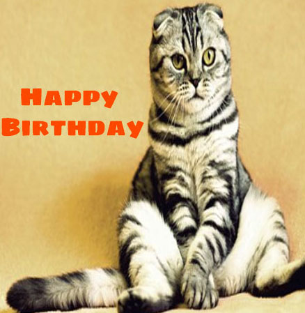 Funny Happy Birthday Images Pics Download