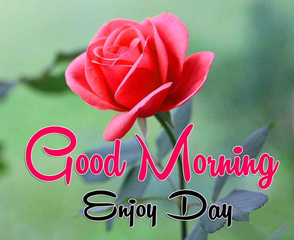Good Morning Wishes Latest Images