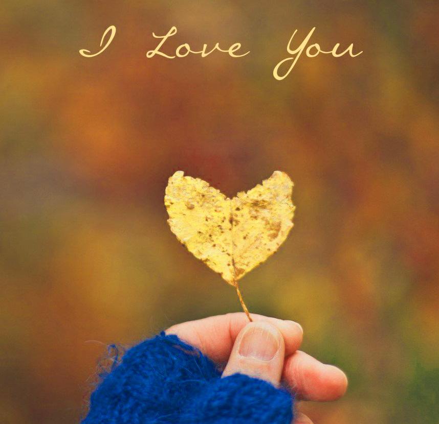 Romantic Love Couple Whatsapp DP Pics Doenload