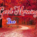 Husband Wife Romantic Good Mornin Images Wallpaper Download