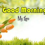Best Flower Good Morning Images wallpaper photo hd