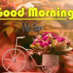 Best Flower Good Morning Images wallpaper photo download