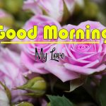 Best Flower Good Morning Images pics photo free hd