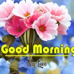 Best Flower Good Morning Images photo hd for whatsapp