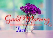 Best Flower Good Morning Images