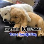 Best Puppy Good Morning Photo Pics