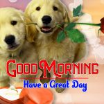Couple Puppy Lover Good Morning Images