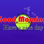 Cute Funny Good Morning Wallpaper