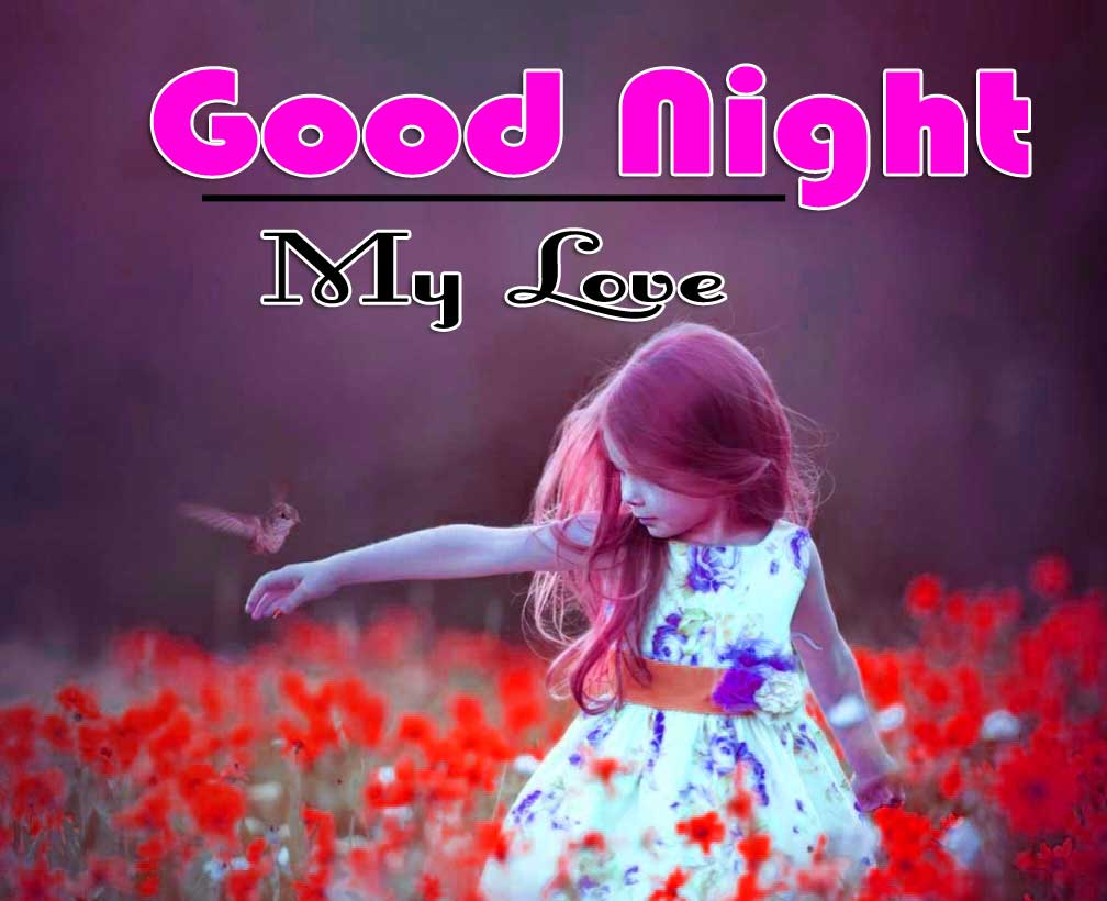 Beautiful Free Cute Good Night Images Pics HD Download