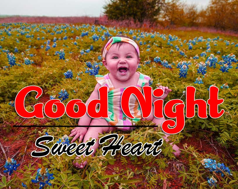 Beautiful Free Cute Good Night Images Photo Download