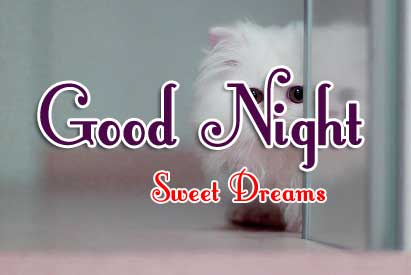 Cute Good Night Wishes Pics