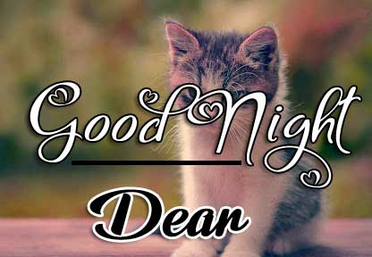 Cute Good Night Wishes Pics Wallpaper Free