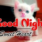 114+ Cute Good Night Images , Cute Good Night Wallpaper HD Download