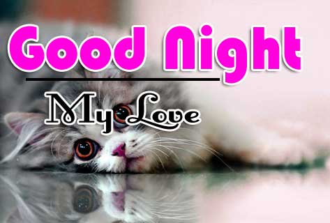Cute Good Night Wishes Pics Photo Download