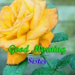 Download Images New Sister Good Morning