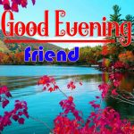 Flower Good Evening Images Free Download